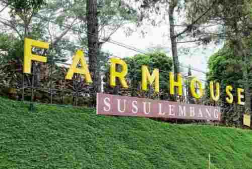 Ternyata Ini Lho Harga Tiket dan Spot Terbaik dari Farm House Lembang