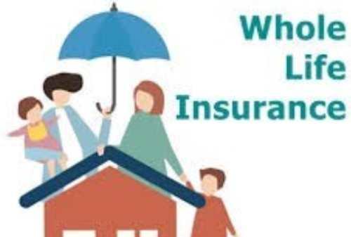 Asuransi Jiwa Term Life vs Asuransi Jiwa Whole Life, Pilih Mana_ 03