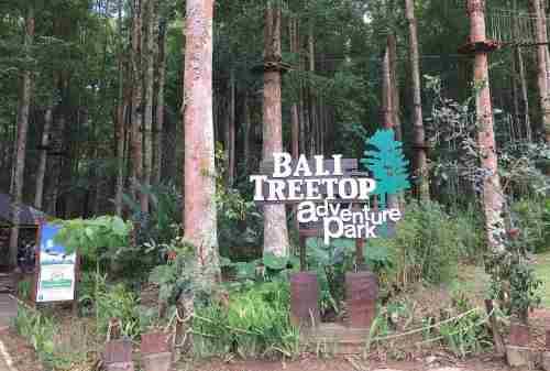 Top 8 Activities You MUST Try In BALI Indonesia 01 Treetop Adventure Park - Finansialku