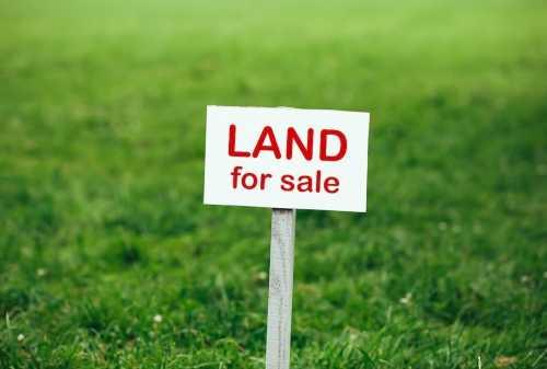 Kaum Milenial Mau Investasi Tanah? Simak Kelebihan & Kekurangannya!