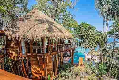Mamole Tree House