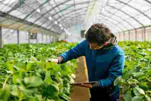 Ini Peluang Kerja Jurusan Agribisnis dan Estimasi Gajinya! 03 - Finansialku