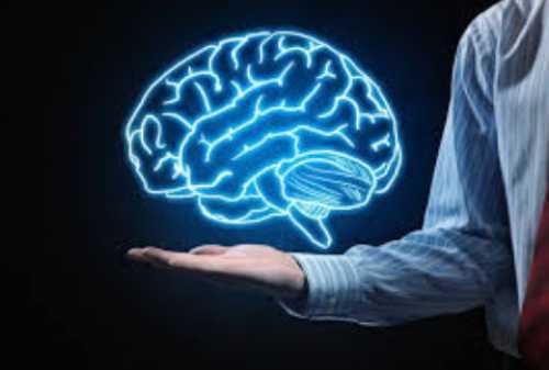 Pengertian Pola Pikir Komprehensif dan Cara Berpikir Komprehensif