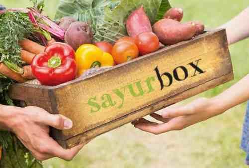 Astra International Guyur Dana Segar Ke Sayurbox