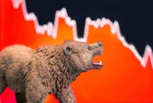 Market Bearish? Jangan Panik! Baca Tips Berikut Ini!