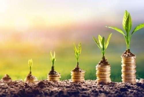 Jenis Investasi Apa Yang Cocok Untuk Fresh Graduate?
