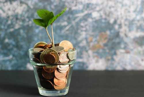 Cara Investasi Reksa Dana Mudah dan Menguntungkan