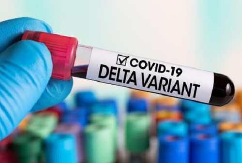 Wajib Lakukan Ini Saat Terinfeksi Virus Corona Varian Delta